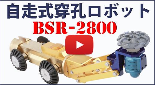 穿孔機 刃 品番 BDH-282